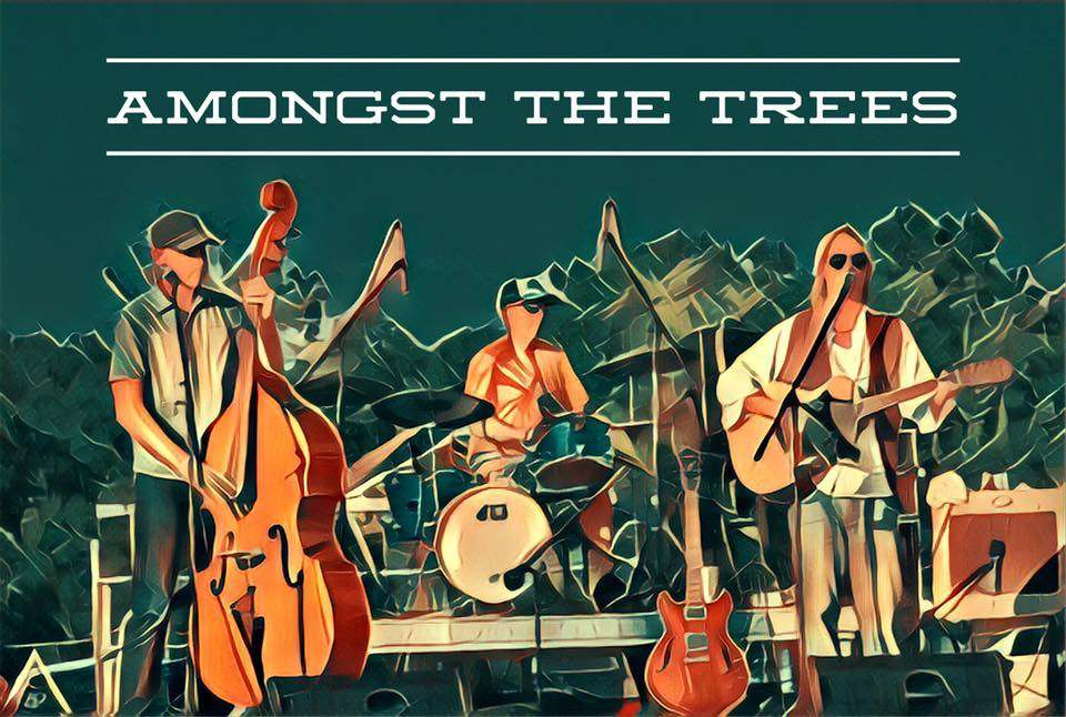 Amongst The Trees Live